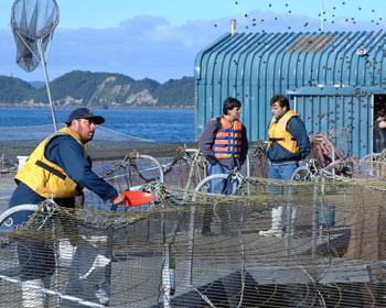 Dia de pesca - 4 2