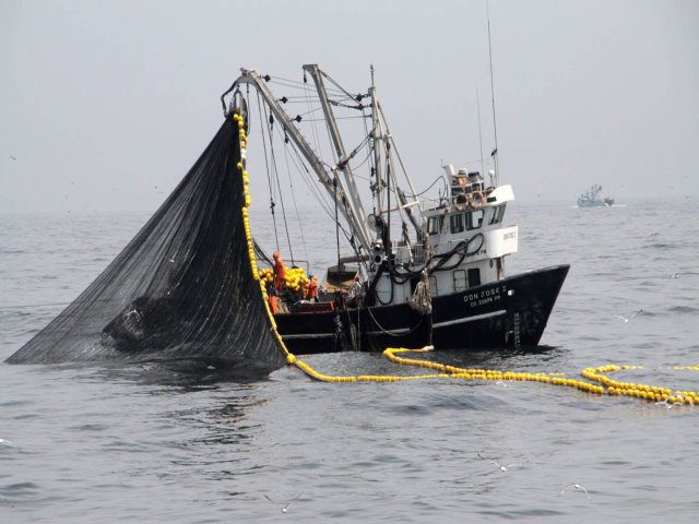 Prefectura le disparó a un buque chino que pescaba ilegalmente